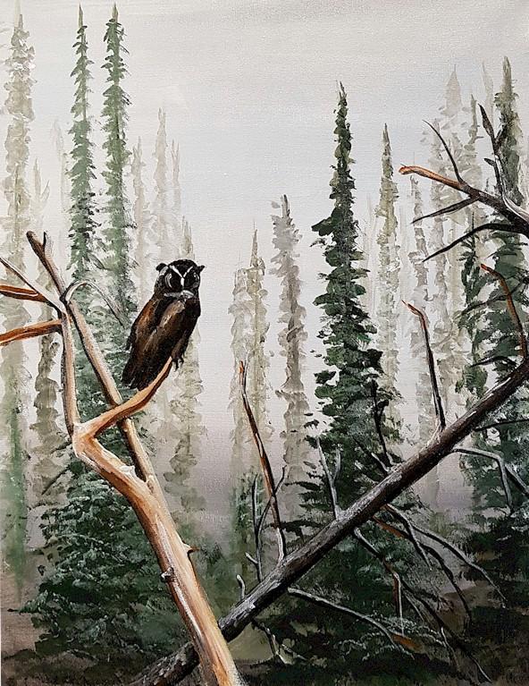 OWL ON WATCH